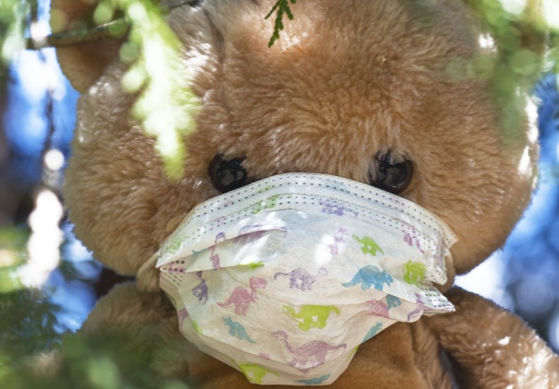 マスクをしたクマ